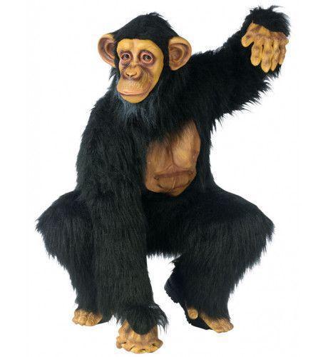 Chimpansee Man Kostuum