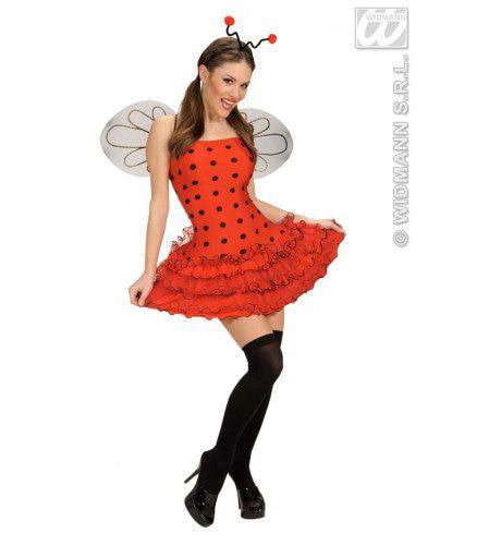 Insect, Sexy Lieveheersbeestje Kostuum Vrouw