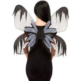 Nachtvlinder Mot Vleugels Insect