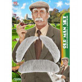 Snor En Wenkbrauwen Oude Man Grandpa Grey