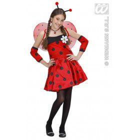 Lieveheersbeestje Schattig Sweet Wings Kostuum Meisje