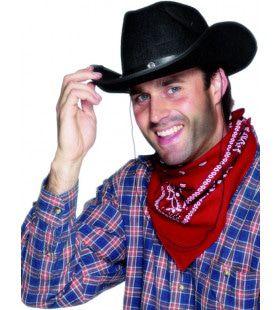 Bandana Cowboy