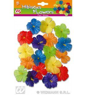 Set Van 18 Hibiscus Bloemen