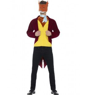 Roald Dahl Fantastic Mr Fox Man Kostuum
