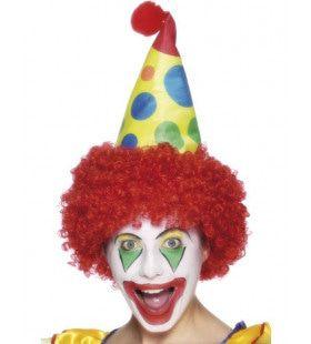 Clownshoed Met Pruik Volwassen
