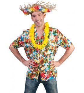 Uitbundig Kleurig Hawaii Hemd