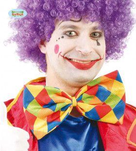 Geruite Vlinderdas Clown 30 Centimeter