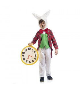 Nerveus Alice In Wonderland Konijn Kind Kostuum