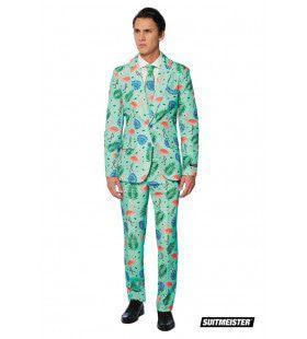 Tropische Varens En Flamingos Man Kostuum