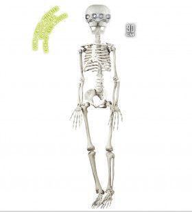Horror-Deco Animatie Skelet Met Draaiend Hoofd, Lichtende Ogen En Geluid, 90cm