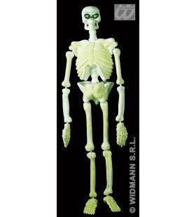 3d Plastic Laboratorium Skelet, 150cm