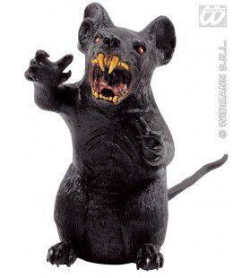 Rechtopstaande Rat, Groot