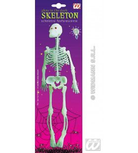 Rubber Skelet 33cm, Lichtgevend In Donker