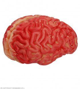 Verse Bloederige Hersenen