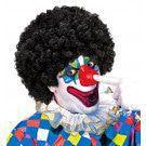 Afro Clownpruik Krullen, Zwart