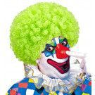 Afro Clownpruik Krullen, Groen